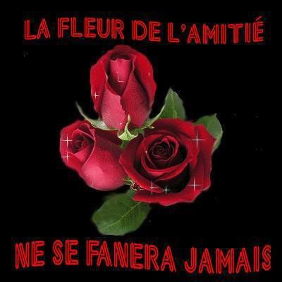 AMITIEE 2
